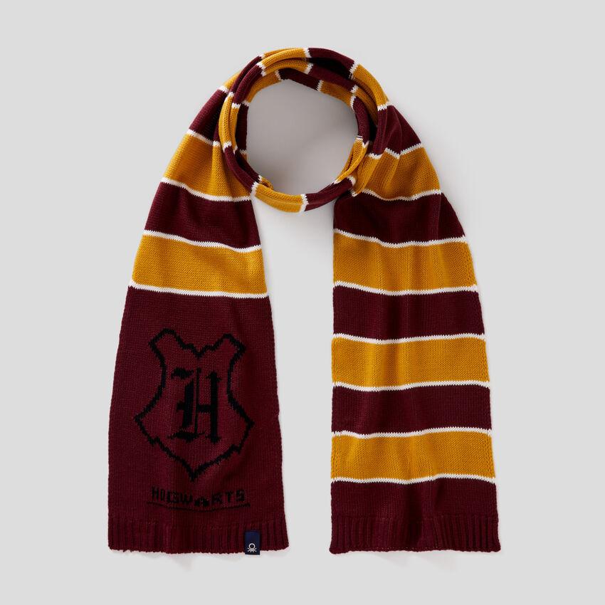 Gestreifter Harry Potter-Schal